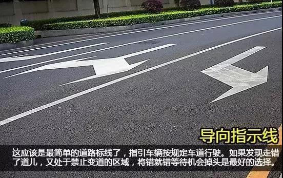 上海考驾照:科一科四中的路面标线,你认识多少?