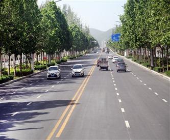 新手上路需养成5大驾驶习惯,让你开车更安全!